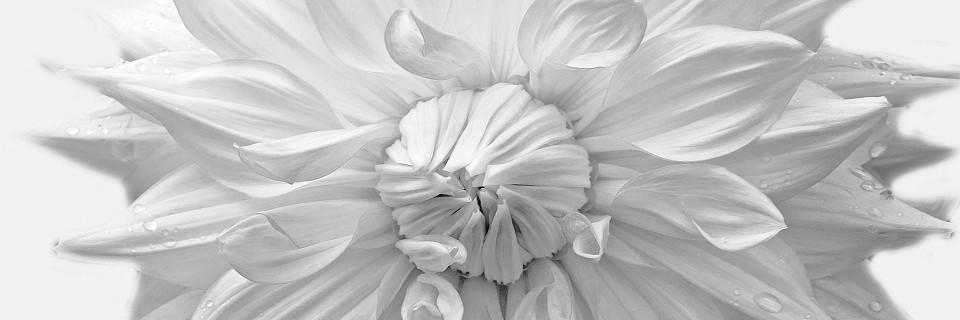 JE SUIS, JE CREE. Astrologie & développement personnel
