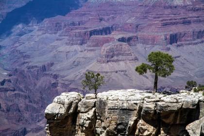 grand-canyon-1752752_960_720