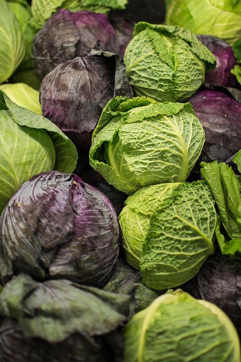 al légumes4